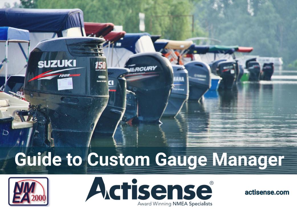 Custom Gauge Manager